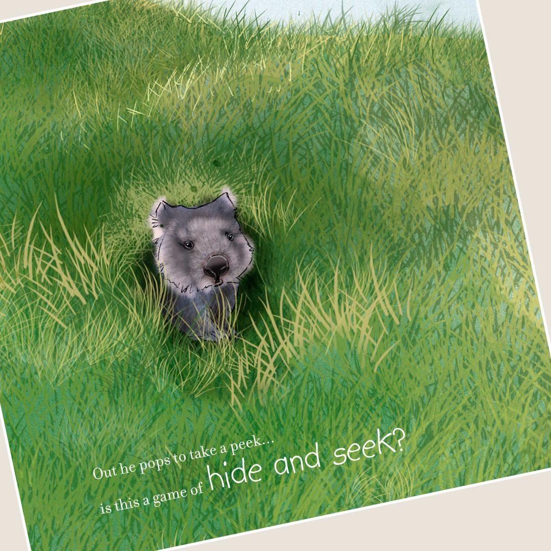 Wombat Illustration
