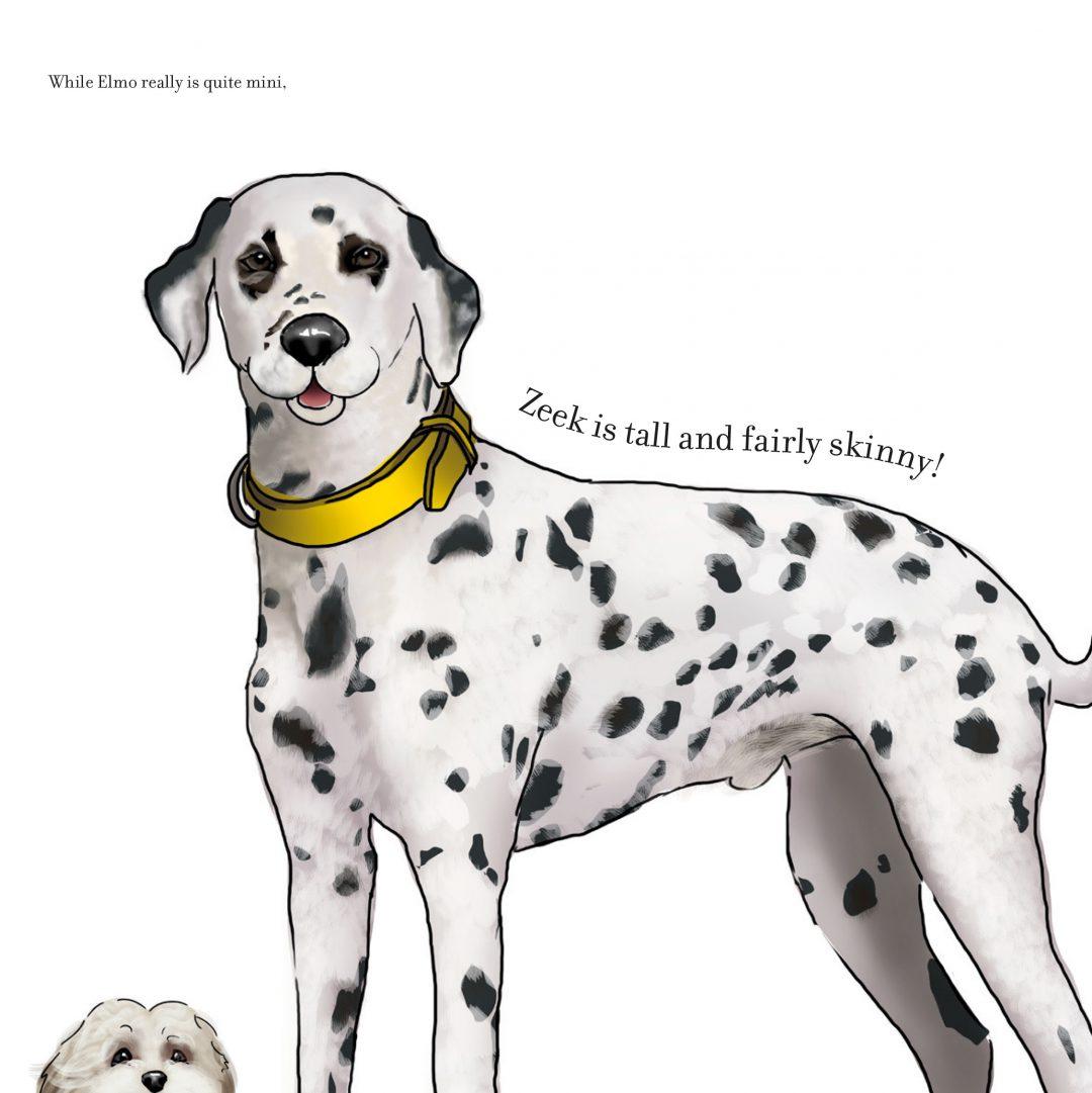 Illustration of a Dalmation