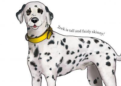 Molly & Friends – Zeek the Dalmation