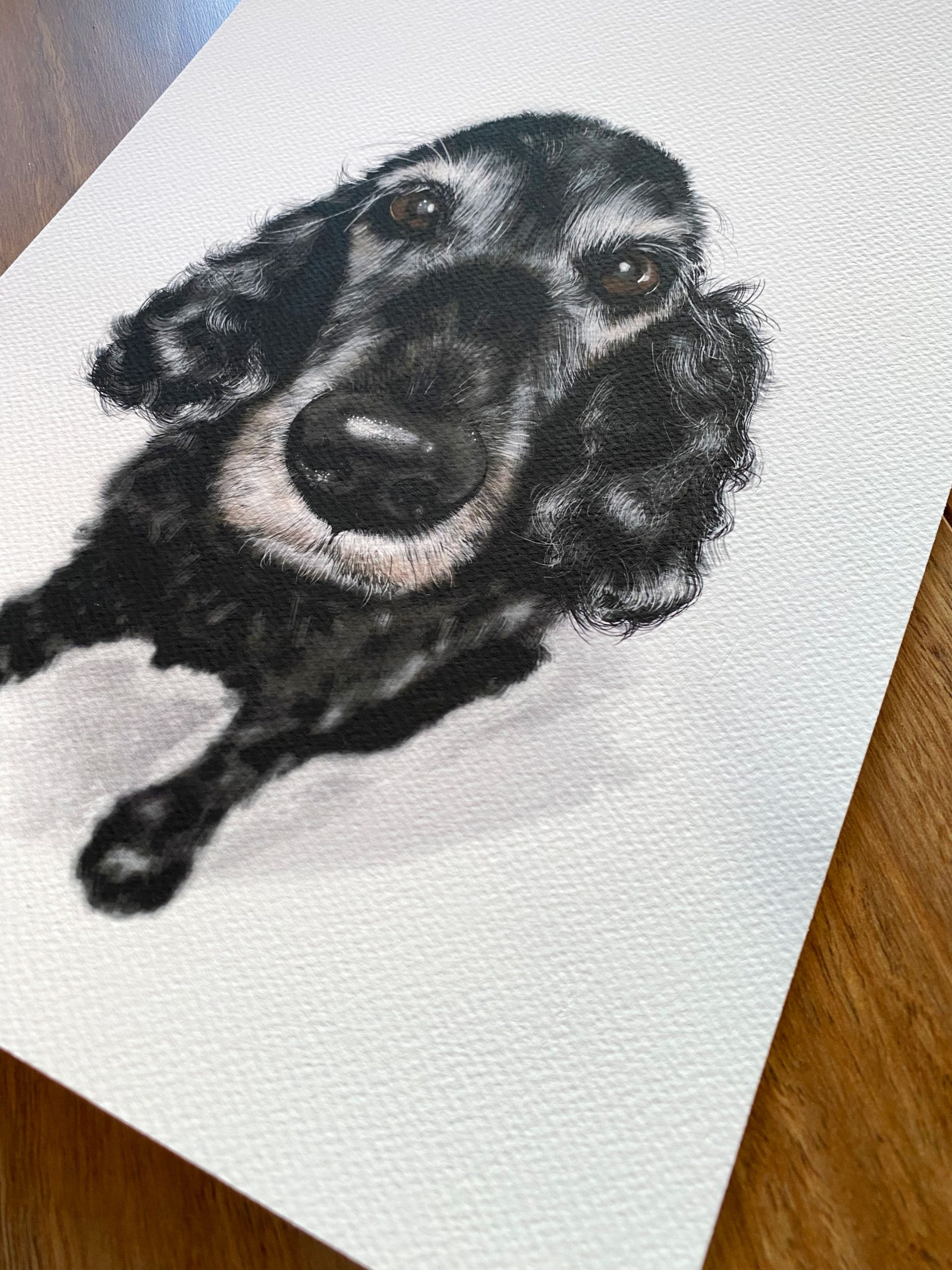Photo of pet portrait printed on archival paper